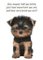 Thinking Of You A5 Card Sentimental Friendship Love Keepsake Friend Birthday