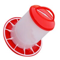 Chicken Feeder Designed For Feeding Food To Your Poultry Poultry