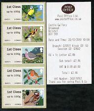 FS6 Birds 1 i Bristol GAP errore 1st CLASSE A Strisce/5 Tii Wincor gli Errori Post & Go
