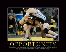 Iowa Hawkeye Wrestling Motivational Poster Art Brent Metcalf Asics Shoes  MVP28