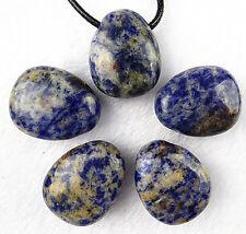 5PCS Beautiful Sodalite carved Freeform pendant bead BC2186