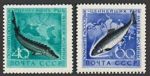 Russia 2222-2223, MNH. Michel 2244-2245. Fish 1959. Sturgeon, Chum Salmon.