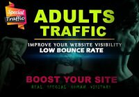 30,000 Real Organic Adult Visitors,website traffic USA and EUROPE