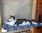 PAWS OUTDOORS, PETITE ANIMAL WINDOW SEAT FOR CATS, MISTY SKY BLUE, CAT BED