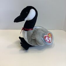TY ORIGINAL BEANIE BABIES LOOSY the CANADA GOOSE, 1998, RETIRED, New With Tags
