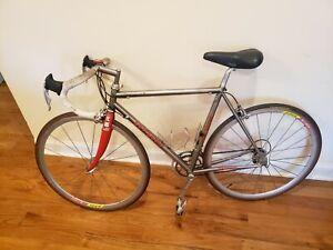 Serotta Colorado Legend TI.  Serotta titanium bicycle with Campagnolo parts.
