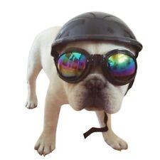 Pet Dog Ridding Caps Helmet Plastic Dog Puppy Bike Motorcycle Cosplay Hat Eyeful