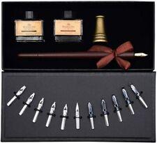 Calligraphy Art Set Kit 11 Nibs Italic Chisel Wooden Dip Pen 2 Ink Bottles Diy