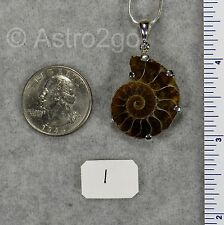AMMONITE PENDANTS $59 Sterling Silver Fossil Jewelry by STARBORN CREATIONS NEW!