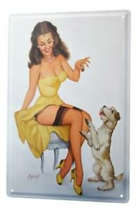 metal plate tin Sign sexy pinup girl with garter belts and dog 20x30 vintage