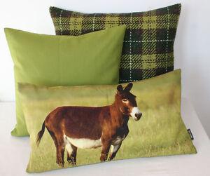 Kissen Kissenhülle Esel Eselchen Sancho 30x50 Fotodruck grün braun natur Proflax
