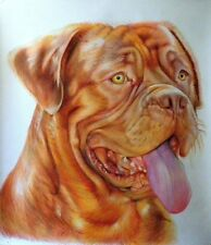 Ritratto portrait di DOGUE DE BORDEAUX (dog) - Matite colorate cm. 65 x 75