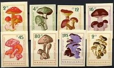 Bulgaria 1961 SG#1274-1281 Fungi, Mushrooms MNH Imperf  Set #D90038