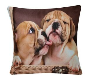 "Animal Print Lovely Bulldog Siblings Square Cushion Cover Pillowcase Bed 17"""