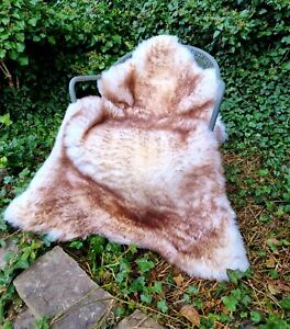 XXXL MASSIVE A+++125cm by 80cm British Cream & Brown Wolftip Sheepskin Rug (449)
