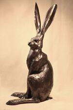 Sitting Hare MED - Paul Jenkins - Superb Gift - New