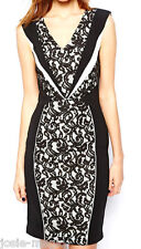 Warehouse Spotlight Panelled Lace Insert Bodycon Dress UK 16 Black/Cream New
