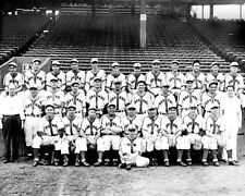 1944 St. Louis Browns Photo 8X10 -