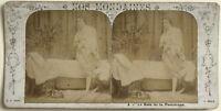 Il Bain Da La Prisienne Scena Artistica Foto n4 Stereo Vintage Albumina