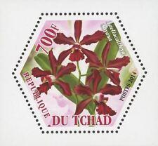 Orchid Plant Flower Nature Laeliocattleya Sayana Mini Sov. Sheet Mint NH