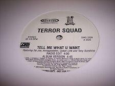 """TERROR SQUAD - TELL ME WHAT U WANT - DJ-12"""" Single"""