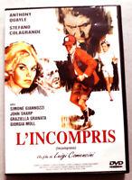 L'incompris - Luigi COMENCINI - dvd Très bon état