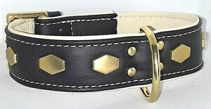 Black and Cream leather dog collar with brass hardware & Hexagonal studs