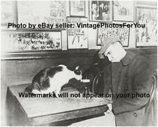 Vintage Old Funny Cute Adorable Cat Kitty Licking Beer Glass Bar Photo Picture