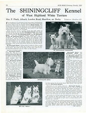 WEST HIGHLAND TERRIER WESTIE DOG BREED KENNEL ADVERT PRINT PAGE OUR DOGS 1951
