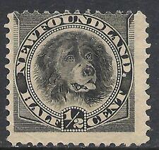 NEWFOUNDLAND SCOTT 58 MNG FINE - 1894 1/2c BLACK ISSUE (B)   CAT $15.00