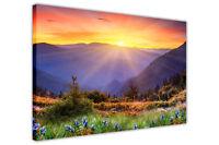 MOUNTAINS SUNRISE FRAMED CANVAS PRINTS WALL ART PICTURES FLORAL ART LANDSCAPE
