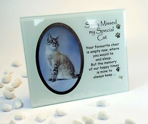 Sadly Missed Cat Memorial Glass Photo Frame