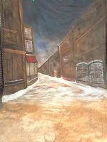 Sale!! WINTER ALLEY 10X20' SCENIC MUSLIN PHOTO BACKGROUND Christmas Street