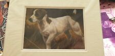 Jack Russel Dog Mounted Art Print 10 X 8