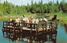 Manistique Michigan Kitch Iti Ki Pi Spring Floating Pier Vintage Postcard K62732