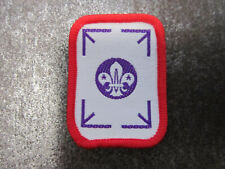 Scout Award Award Cloth Patch Badge Boy Scouts Scouting (L28S)