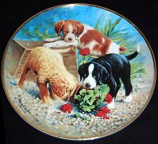 Triple Trouble by James Killen ~ Aspca ~ Franklin Mint Collectors Plate
