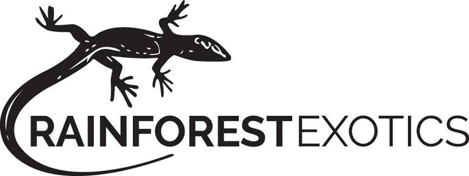 Rainforestexotics