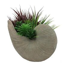 BOTANICAL SHELL PLANTER LARGE Vase GARDEN VINTAGE POT CEMENT CONCRETE 33CM