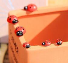 Wooden Ladybug Educational Blackboard/Whiteboard 3D Sticker Symbols Mark x10