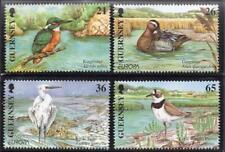 GUERNSEY MNH 2001 SG891-94 Europa-Water Birds