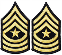 2 Pair US Army Sergeant Major E-9 Rank Insignia Chevron Patches - Male