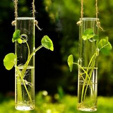 Wall Hanging Cylinder Clear Glass Vase Table Bottle Plant Flower Home Decoration