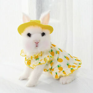 Bunny Harness and Leash Pineapple Dress for Rabbit Small Pet Rabbit Clothes Hat