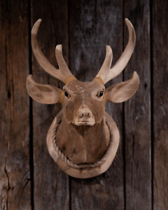 HAND-CARVED WOODEN DEER HEAD, MEDIUM, FREE SHIPPING