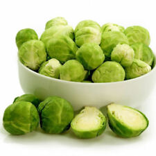 100Pcs Ukraine Organic Vegetable Cabbage Seed1 Brussels Sprout Long Island Seeds