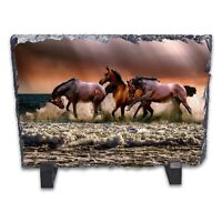 Wild Horses Rock Slate Photo Frame - Rectangle