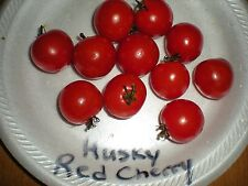 Husky Red Cherry Tomato! Rare! 20 Seeds! Comb S/H! See Our Store!