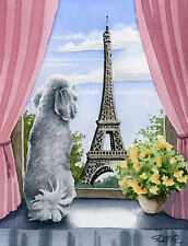 White Poodle In Paris Painting Dog 8 x 10 Signed Art Print Djr