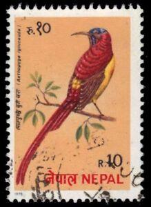 "NEPAL 367 - Fire-tailed Sunbird ""Aethopyga ignicauda"" (pa80288)"
